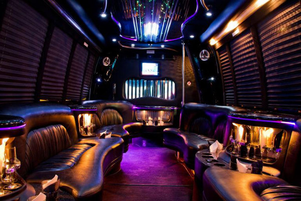 18 people party bus rental New Orleans